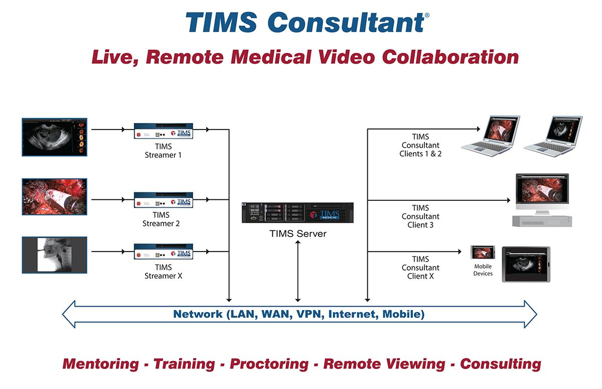 TIMS-Consultant-workflow-diagram